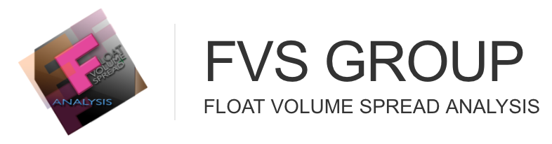 FVS Group